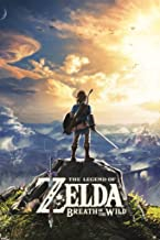 The Legend of Zelda Breath of The Wild Hyrule Video Game Gaming Cool Wall Decor Art Print Poster 24x36 inch