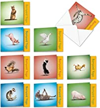 10 Assorted Barnyard Yoga Blank All Occasions Note Cards 4 x 5.12 inch w/Envelopes - Featuring Farm Animals Dancing in Challenging Yoga Poses - Assortment Box of Funny Zoo Notecards MQ4065OCB-B1x10
