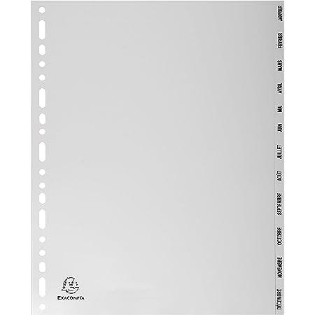 Exacompta - Réf. 2812E - Intercalaires gris en polypropylène recyclé avec 12 onglets imprimés mensuel de Janvier à Décembre - Format à classer A4 maxi - Dimensions 24,5 x 29,7 cm - certifiés Ange Bleu