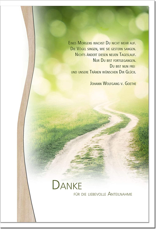 MetALUm Danksagungskarten TRAUER     Weg   25 Karten   1525010 B01BP969VI | Günstige Preise  7247b9