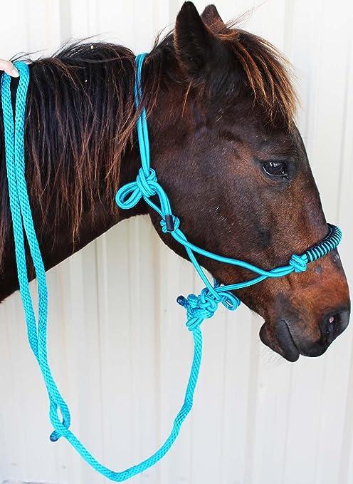 PRORIDER Nylon Braided Horse Halter Lead Rope Noseband Tack Green 606118