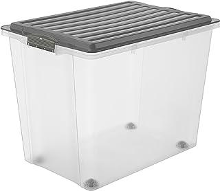 e5ddbe92be95 Rotho – Caja para Guardar Compact Transparente con Tapa, plástico,  Transparente y Gris,