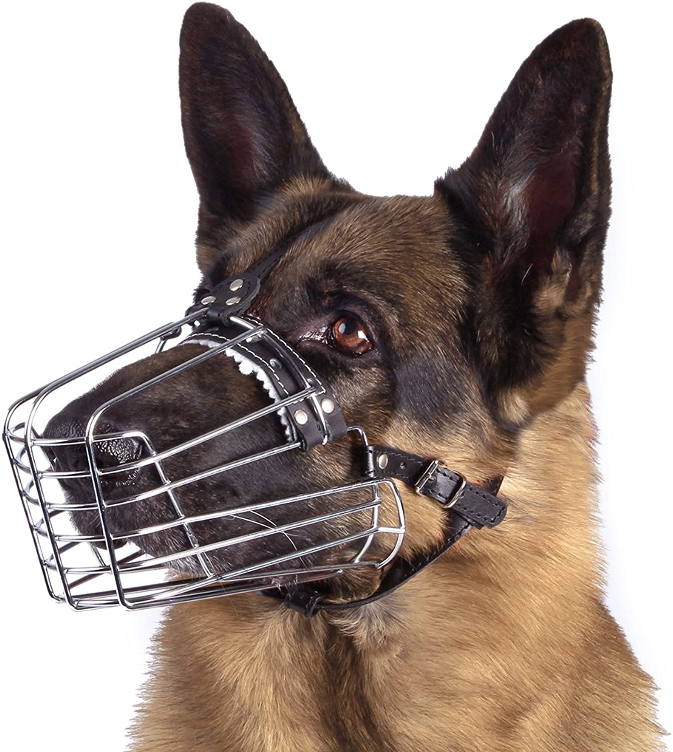 BronzeDog Dog Muzzle German Shepherd Wire Basket Metal Mask Leather Adjustable Medium Large Pets (M)