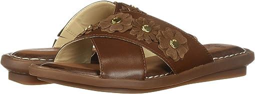 Dachshund Leather