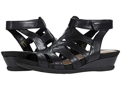 Earth Pisa Chatham (Black Eco Calf) Women