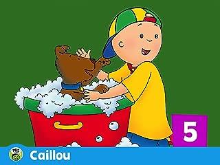 Caillou Season 5