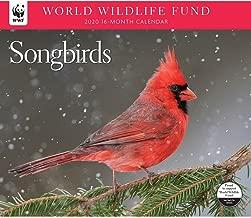 2020 Songbirds WWF Wall Calendar, by Calendar Ink