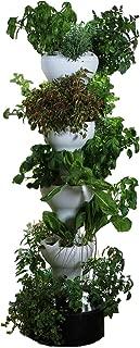 Foody 8 Vertical Hydroponic Home Garden - Enjoy Fresh Herbs, Vegetables, Edible Flowers All Year Long - Indoor/Outdoor
