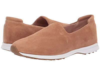 Taryn Rose Briella (Doe Stretch Suede) Women