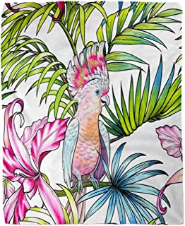 rouihot 60x80 Inches Flannel Throw Blanket Tropical Pattern Beautiful Pink Parrot Cockatoo Palms Orchids Home Decorative Warm Cozy Soft Blanket for Couch Sofa Bed