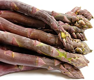 Purple Passion 10 Live Asparagus Bare Root Plants -2yr-Crowns from Hand Picked Nursery