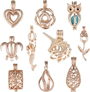 Best gold oyster charm Reviews