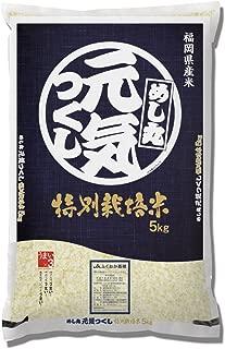 【精米】福岡県産 特別栽培米 白米 元気つくし 5kg 平成30年産