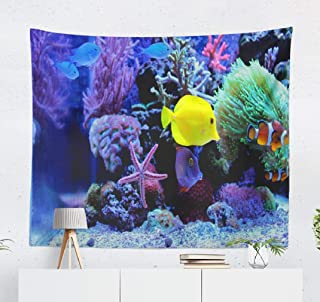 Deronge Reef Tapestry, Amazing Coral Reef Fish Africa Animal Aquatic Australia Tapestry Wall Hanging Decor 50x60 Inch Wall Art Tapestry for Men Decorative Tapestry Dorm Decor,Amazing Coral Reef