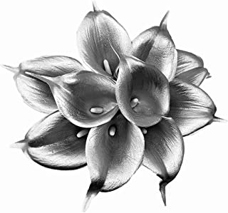 Floral Kingdom USA 14