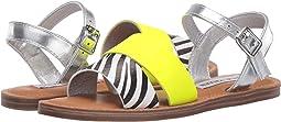 Zebra Multi
