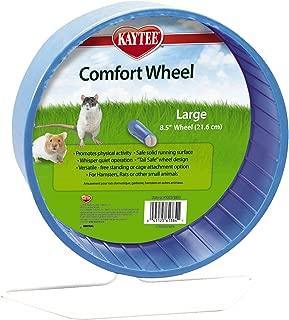 guinea pig running on a wheel