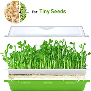 Best seedling tray sizes Reviews