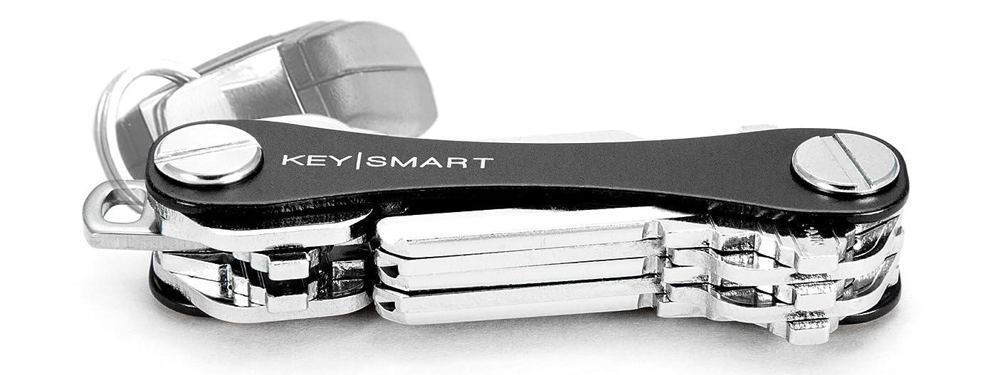 KeySmart Classic - Compact Key Holder and Keychain Organizer (up to 14 Keys, Black) pzivosrgysw087