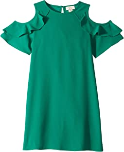 Ruffle Sleeve Dress (Little Kids/Big Kids)