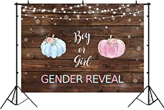 Pumpkin Gender Reveal Backdrop Rustic Wood Blue or Pink Watercolor Pumpkin Gender Reveal Baby Shower Photo Background Boy or Girl Announce Pregnancy Party Decorations Banner Photo Booth Props 7x5ft V