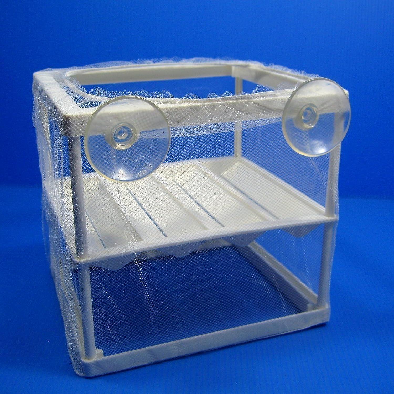 Breeder Trap Net Hatchery Separation Incubating box NEW