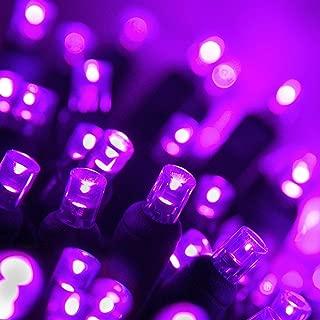 70 5mm LED Purple Lights, 24' Halloween Lights Christmas Lights LED String Lights Mini Lights Holiday Lights Halloween Decorations Outdoor