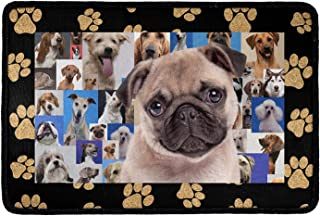 Pensura Custom Doormat, Print Pug Outdoor/Indoor for Home Entrance for Entrance Bedroom Bathroom Kitchen 23.6x15.7 Inch