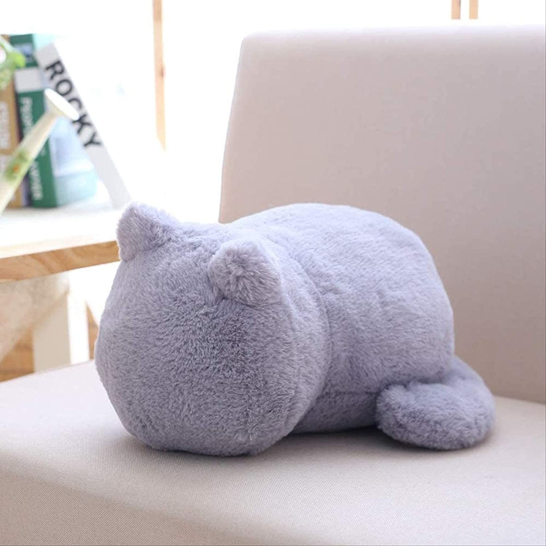 AKwwmy Cat Doll Plush Toy Heart Pillow OFFicial shop Girl Cute 2021 autumn and winter new Girlfriend