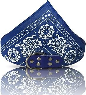 Best blue bandana collar Reviews