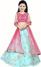 Suppar Sleave Girl's Net Semi-stitched Lehenga Choli (Sky Blue_Free Size)