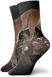 tyui7, Calcetines de compresión antideslizantes Mountain Lion Cosy Athletic 30cm Crew Calcetines para hombres, mujeres, niños