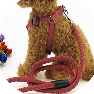 Love-pink Hot Fashion Nylon Pet LED Dog Leash Night Safety Flashing Glow Pet Supplies Dogs LED Dog Collar Width