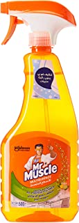 MR MUSCLE ALL PURPOSE CLEANER 500 ml