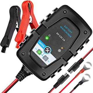 MEEARO 6V 12V 1Amp Trickle Battery Charger Automotive Battery Maintainer Smart Float for Auto Car Motorcycle Lawn Mower ATV RV SUV Golf Cart Boat Scooter and More
