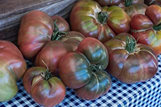 30 Carbon Tomato Seeds 2018 (All Non-GMO Heirloom Vegetable Seeds!)