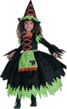 Story Book Witch Costume - Toddler Small