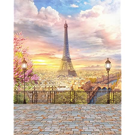 Eiffel Tower 8x10 FT Backdrop Photographers,Sunset Over Eiffel Tower and Seine River Paris France Nature Scene Background for Child Baby Shower Photo Vinyl Studio Prop Photobooth Photoshoot