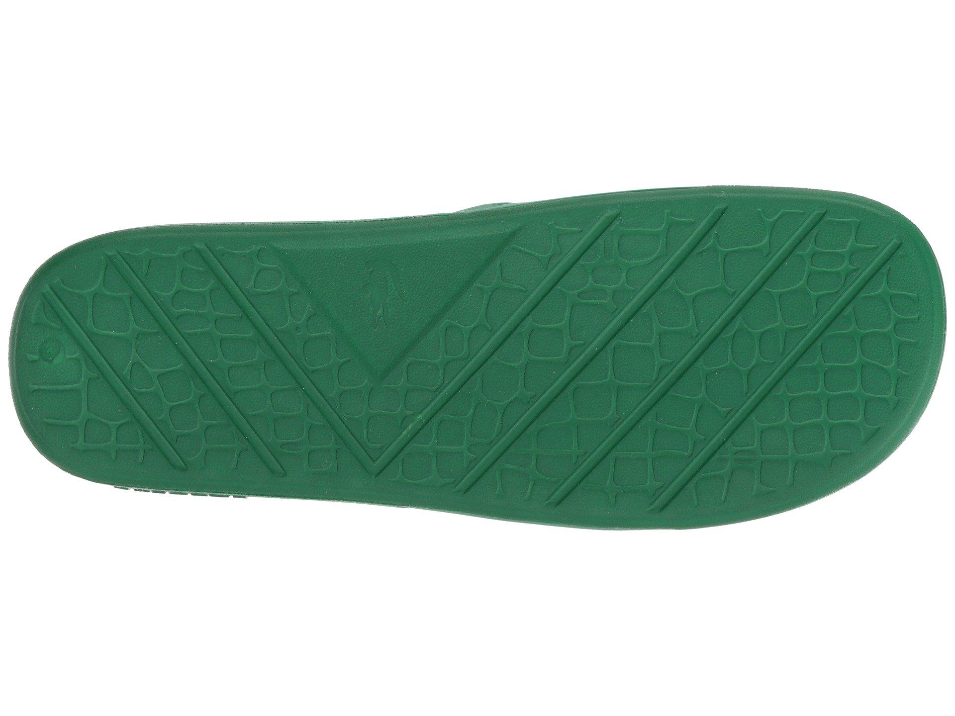 Fraisier 1 Lacoste Green P white 318 4PwHqwB