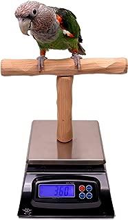 NU Perch Parrot Training Scale