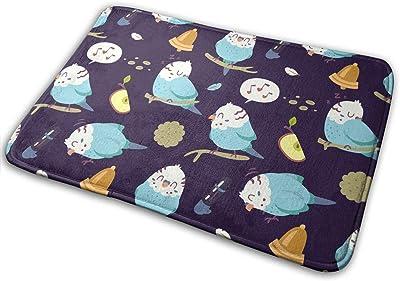 Cartoon Budgie Parrot Carpet Non-Slip Welcome Front Doormat Entryway Carpet Washable Outdoor Indoor Mat Room Rug 15.7 X 23.6 inch
