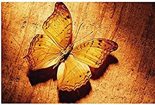 Wwbqcl Modern Mural Image by Digital 5D DIY Painting or Butterfly Specimen with Frame on Adult Children's Beginner Acrylic Canvas Painting, Oil Painting, Children's Handcraft
