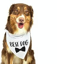 Moonwake Designs Best Dog Bandana, Wedding Dog Bandana, Bridal Party Dog Bandana, Wedding Photo Prop, Pet Scarf, Pet Accessories