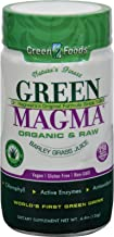 Green Foods Dr Hagiwara Green Magma Barley Grass Juice Powder - 250 Tablets - 70%+ Organic - Gluten Free - Vegan
