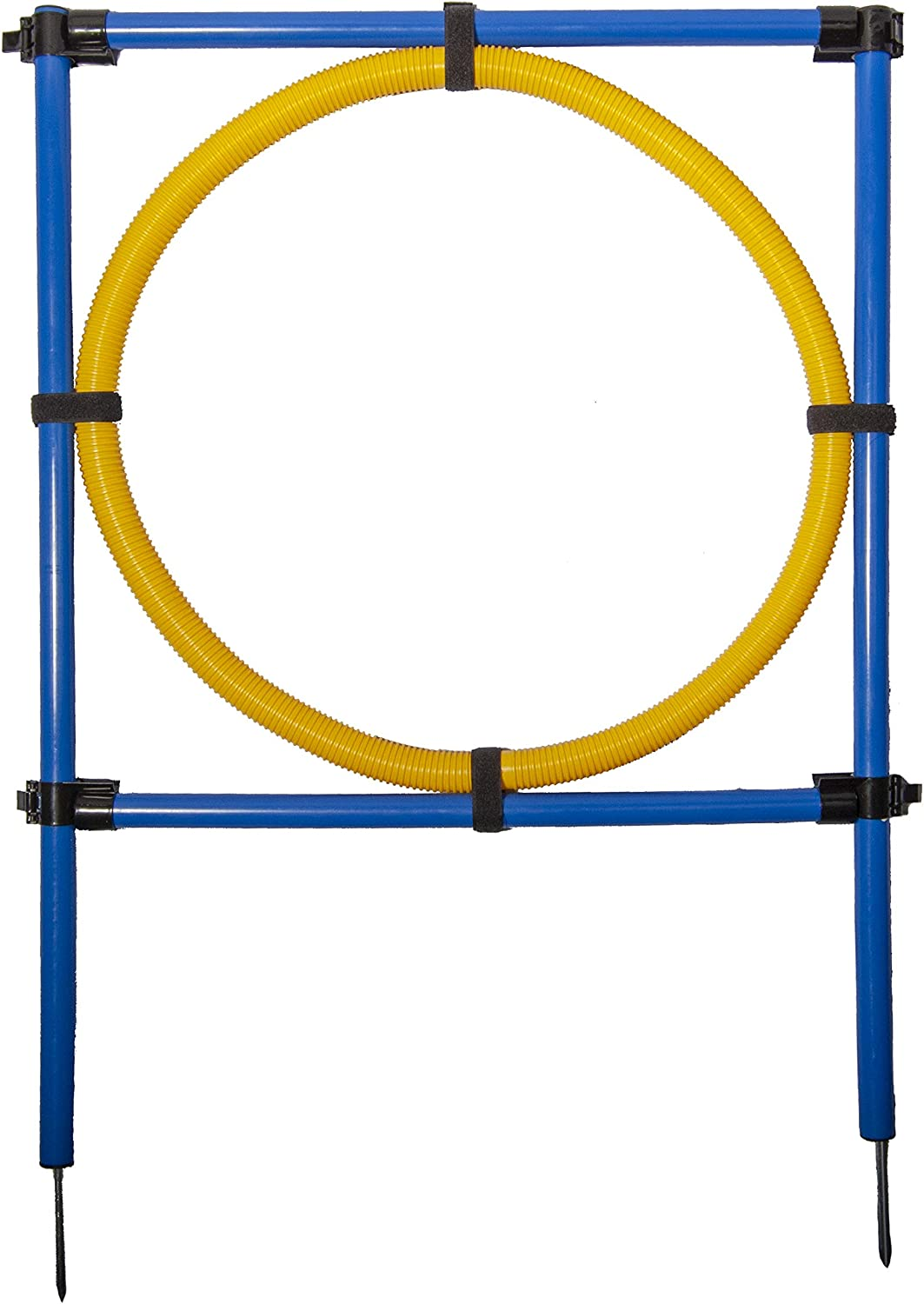 Pet Brands Regular store Agility Hoop Jump Today's only Dog