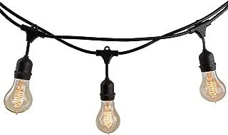 Bulbrite 14 ft, 10-Socket Decorative String Light Kit with Clear Incandescent Nostalgic Spiral Filament (A19) Bulbs, 1 Item, Black