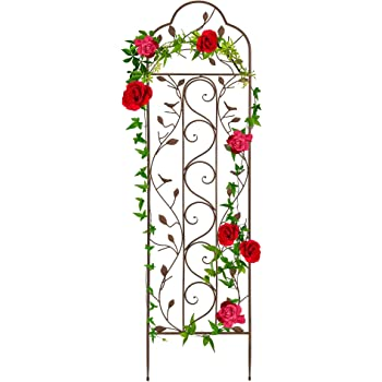 Best Choice Products 60x15-inch Iron Arched Garden Trellis w/Branches, Birds for Lawn, Garden, Backyard, Climbing Plants