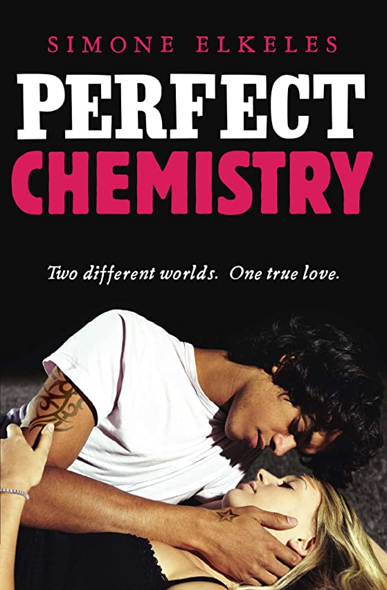 専門化する特殊重くするPerfect Chemistry (English Edition)