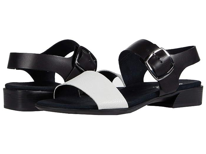 Munro Cleo (White/Black Combo) Women's Shoes