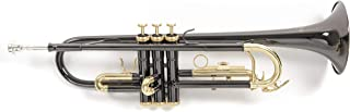 Roy Benson RB701052 - Trompeta en Sib TR-101K, estuche